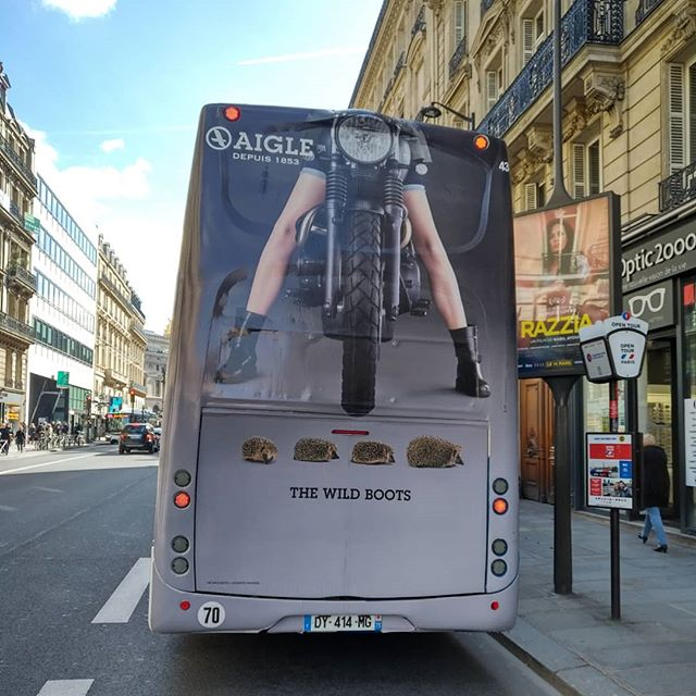 L'Aigle ou la cuisse ?.......#aigleboots #bus #ad