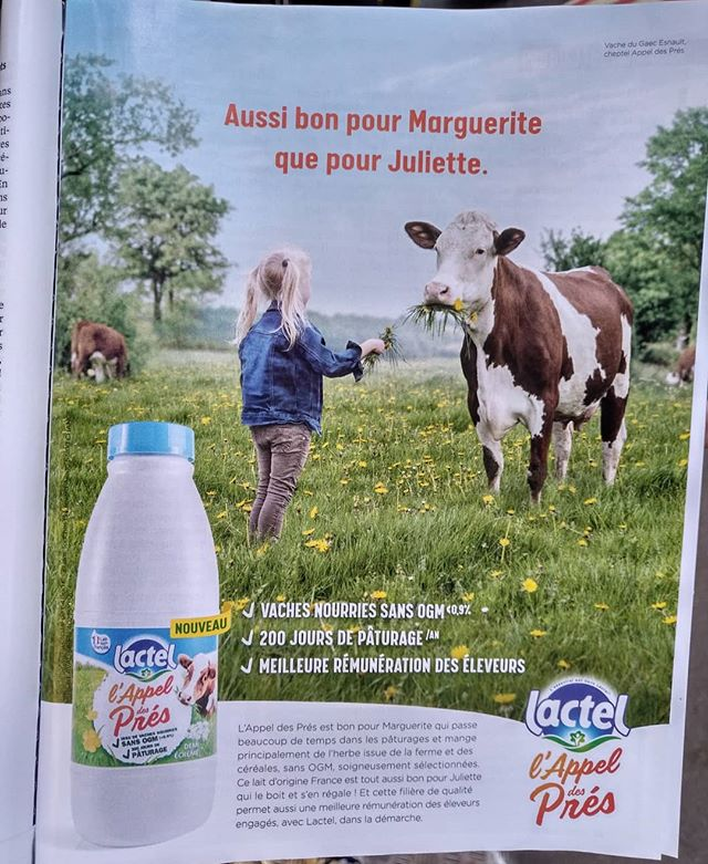 Ce qui n'empêchera pas Juliette, de manger Marguerite ! 🍽.........#VuALaPub #publicité #publicite #advert #lactel #drink #France #French #kid #fields #food #flowers #beef #beeflover #steak #naturelover #green #friendship #love #health #healthy #healthylifestyle #igersparis #igersfrance #sain #simplelife